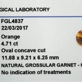 Image for Sri Lanka Natural Hessonite Garnet 4.71 carat